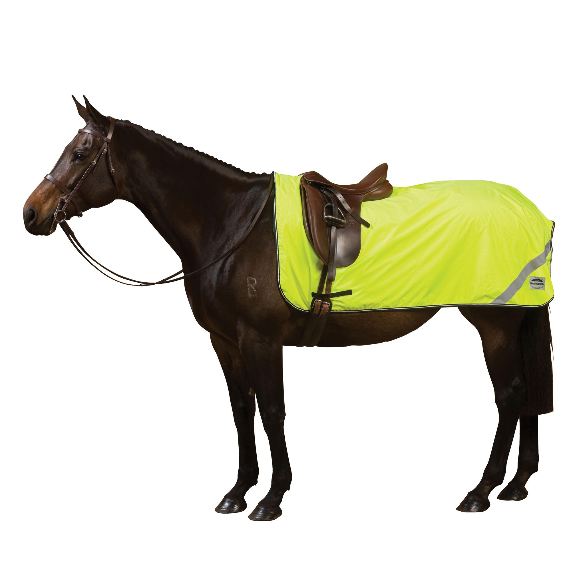 Home Horse Clothing Turnout Rugs