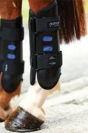 dalmar back event boots