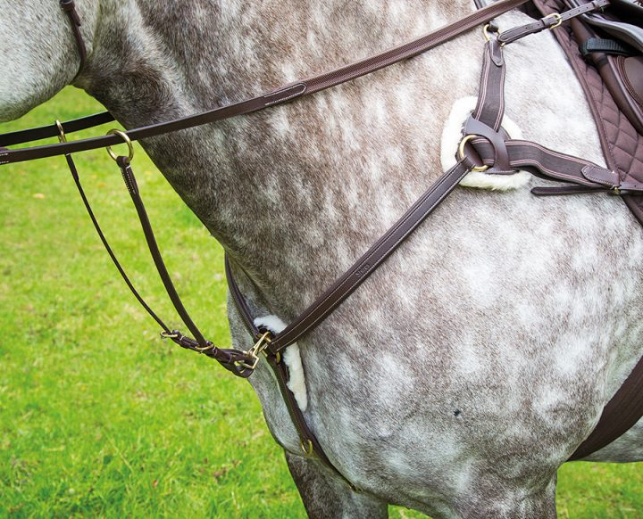 Five Point Breastplate 1