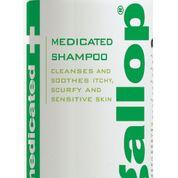 Gallop Medicated Shampoo2
