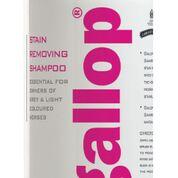 Gallop Stain Remover shampoo2 - Copy