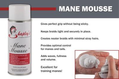 Shapley's Mane Mousse 2