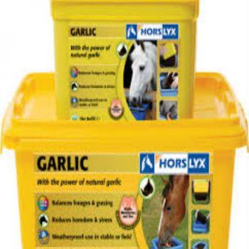 Horslyx Garlic