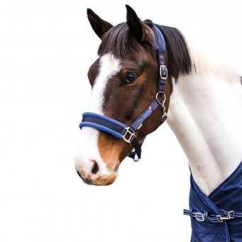 LovesonFleece lined Headcollar Navy.Blue