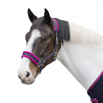 Loveson Fleece Lined Headcollar Navy.Pink