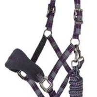 LeMieux Signature Headcollar Purple Grey 1