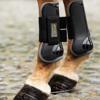Amigo Tendon boots
