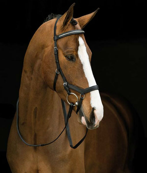 Diamante Comp Micklem bridle