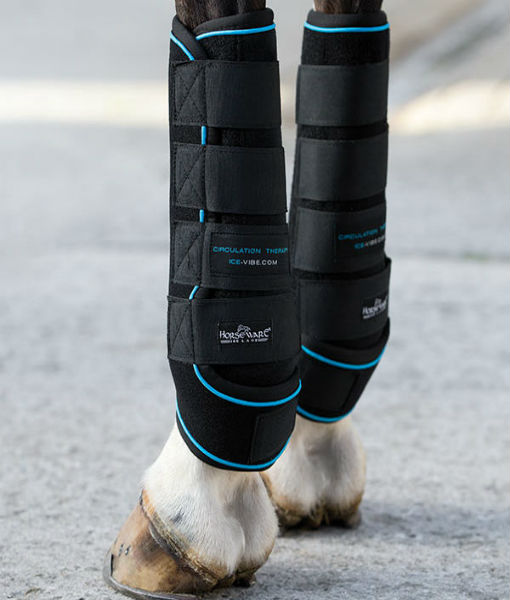 Ice Vibe Horse Boots