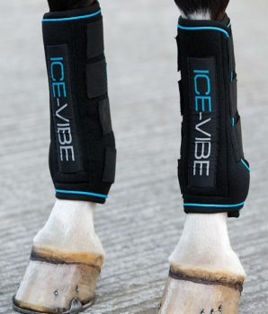 Ice Vibe Horse Boots 1
