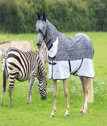 Tempest Original Zebra Print Fly Rug