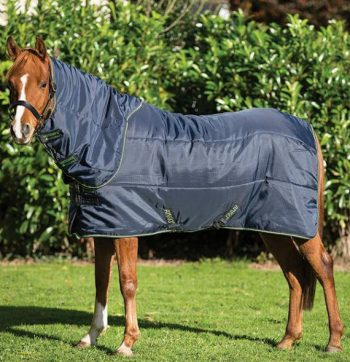 Amigo Insulator Plus Stable Rug pony