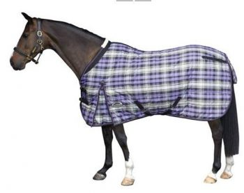 weatherbeeta stable rug purple