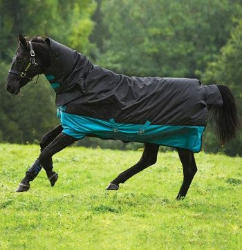 Mio All in One Turnout Rug