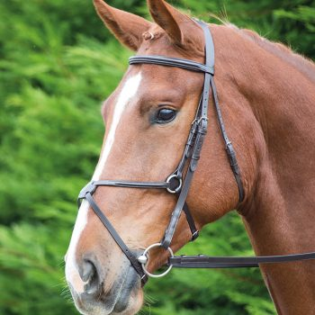 Aviemore Mexican Bridle