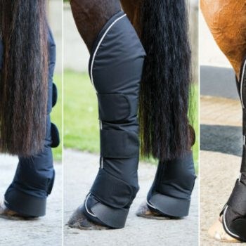 Horseware Padded Travel Boots