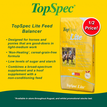 TopSpec Lite Balancer Offer