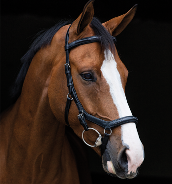Micklem Bridle English Leather