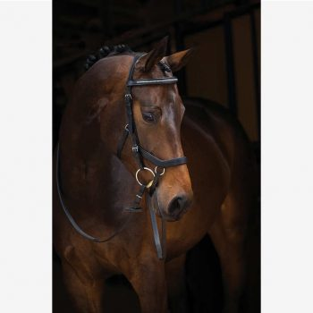 Micklem Diamante Competiton Bridle English Leather