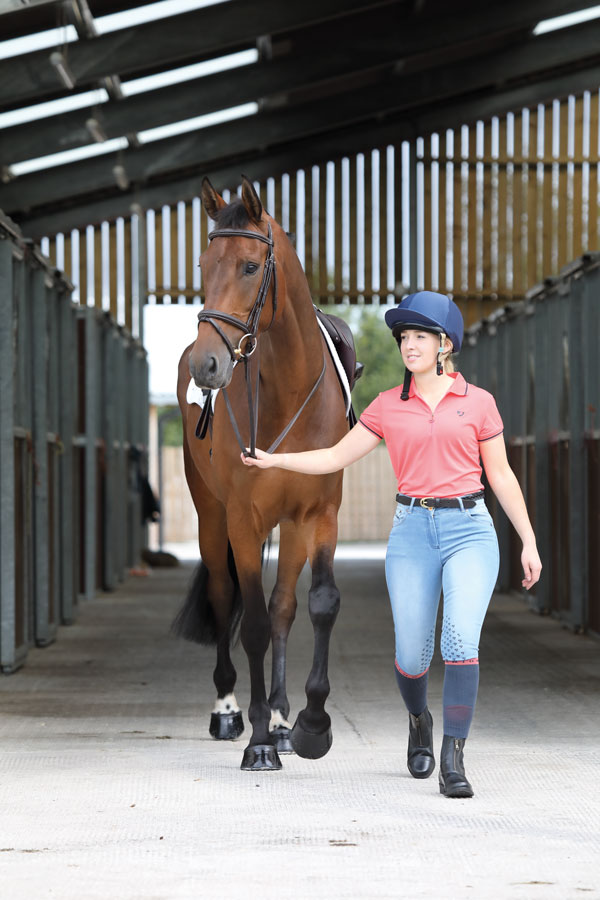 Aubrion Putney Breeches Saddles And Style