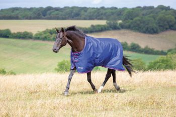 Original 100g Turnout Rug