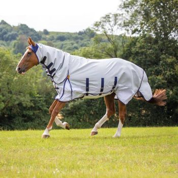 Shires Highlander Plus Sun Shade Combo
