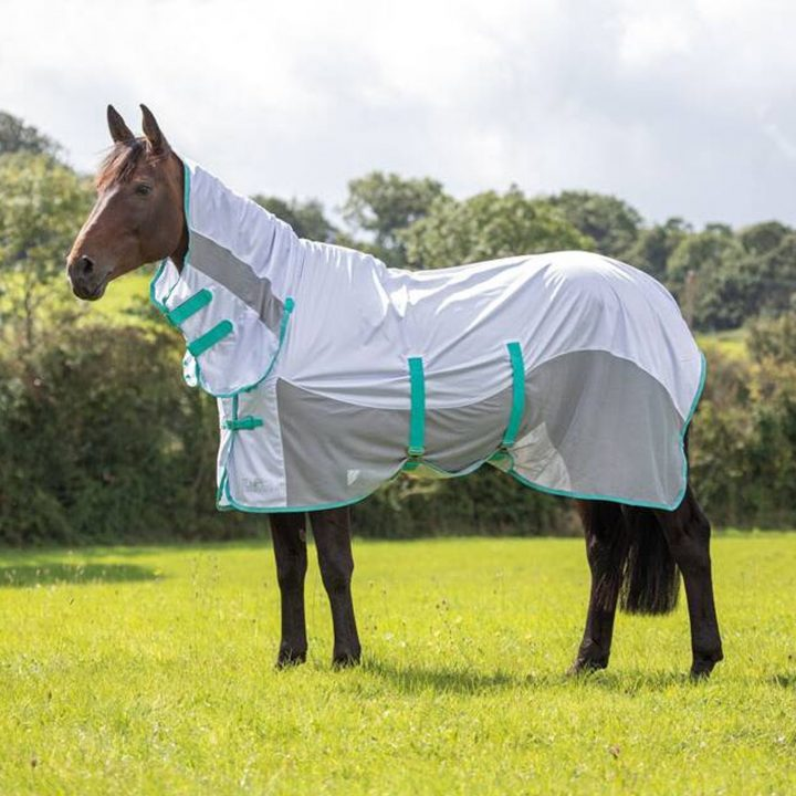 Shires Tempest Original Fly Mesh Combo