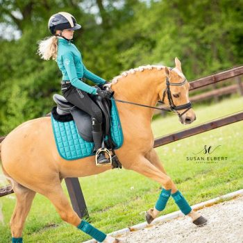 LeMieux Loire Peacock Saddle Pad MF