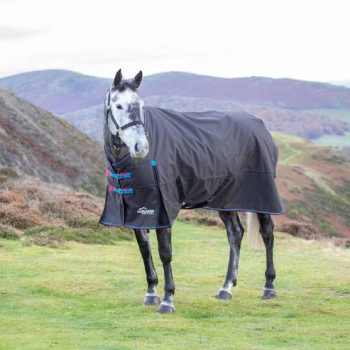 Shires Highlander Black