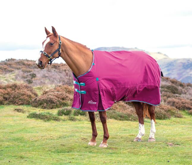 Shires Highlander Raspberry