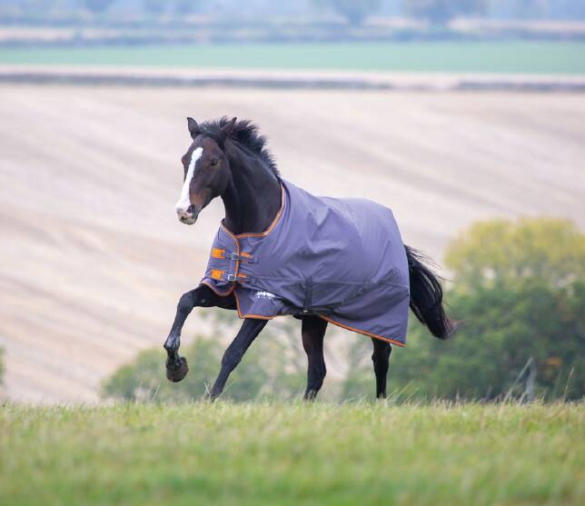 Shires Tempest Grey Middle Weight