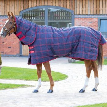 Tempest Combo Stable Rug