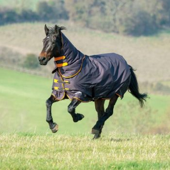 Tempest Original 200g Turnout Rug and Neck Set