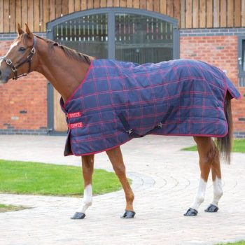 Tempest Stable Rug