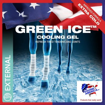 Equine America Green Ice Cooling Gel