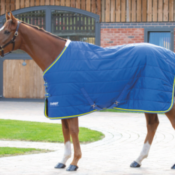 100 g stable rug